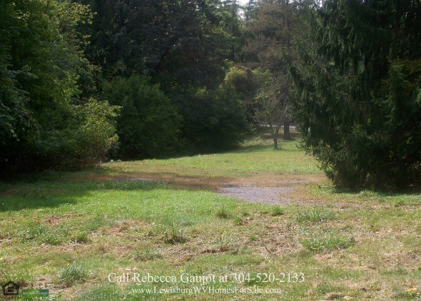 Business Opportunity : Commercial Lot for Sale in Fairlea WV